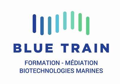 Logo Blue Train
