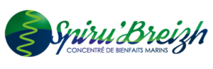 Logo Spirubreizh