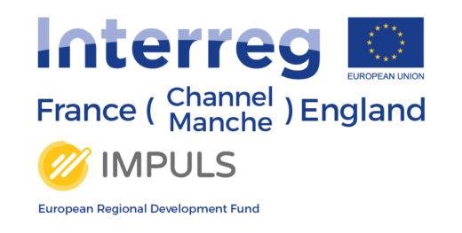 Logo projet IMPULS